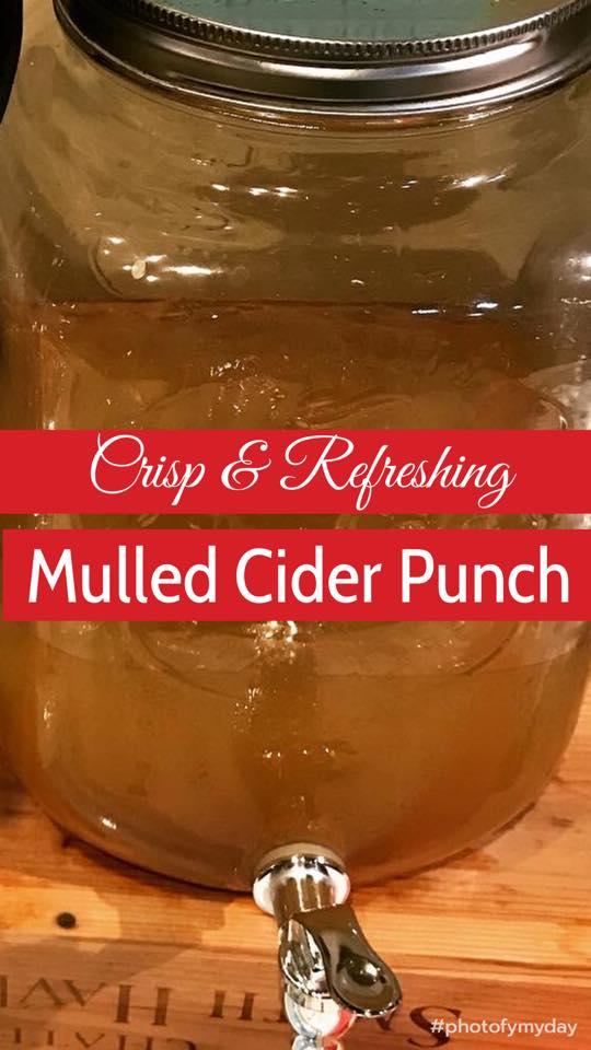 Mulled Cider Punch